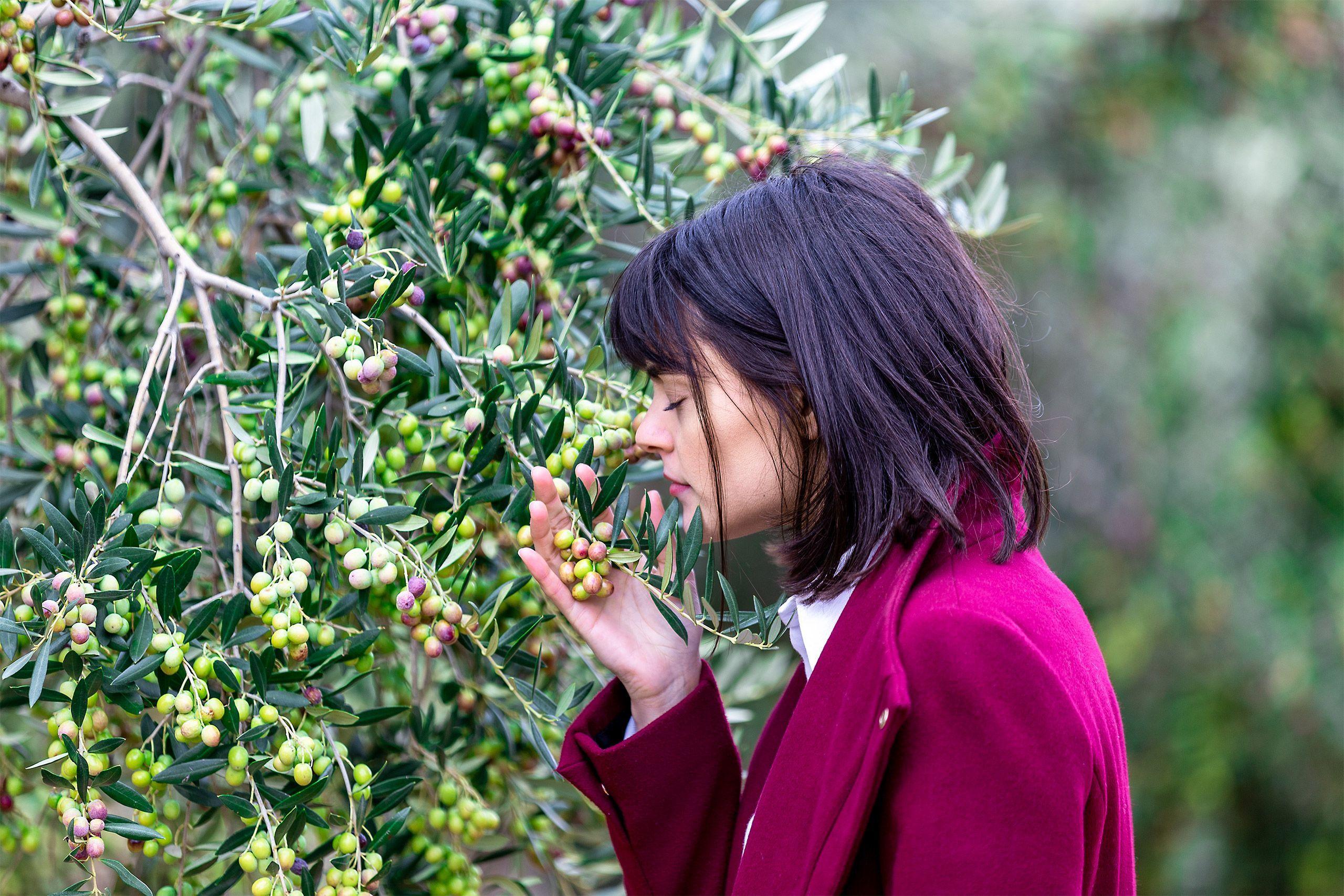 La actriz Cumelen Sanz ha protagonizado el nuevo video promocional para Escornalbou Gourmet - Aceite De Oliva Virgen Extra 100% Arbequina. Cómpralo en nuestra tienda online.
